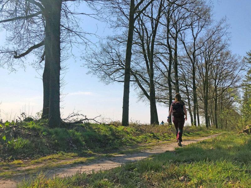 Veluwe-Zwerfpad-etappe-2
